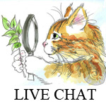 Live Chat2